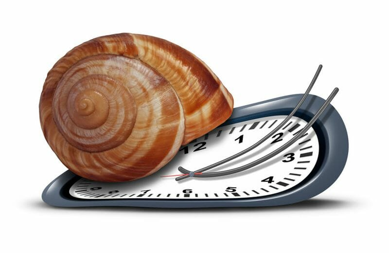 a clock with a snail shell to demonstrate anti-aging
