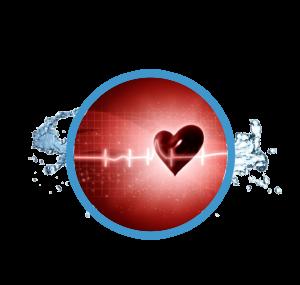 heart with ecg overlay