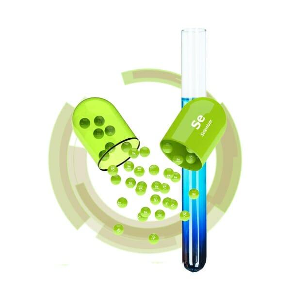 selenium for micronutrient testing