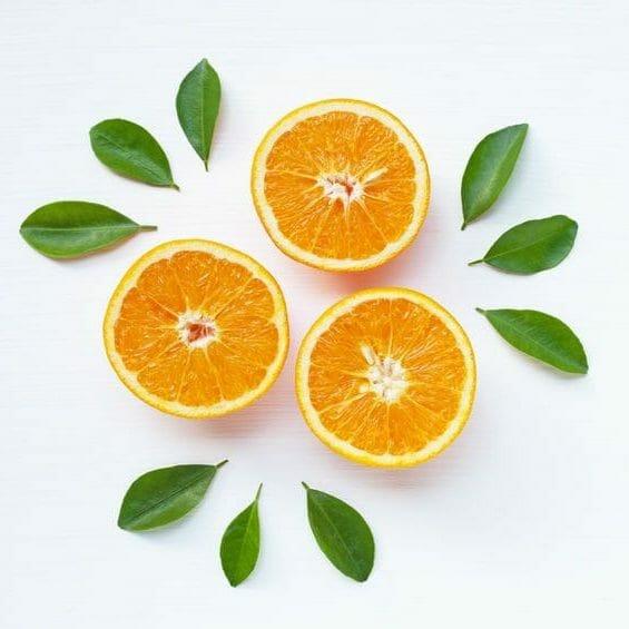 Fresh orange citrus fruit isolated on white background.  Top view
